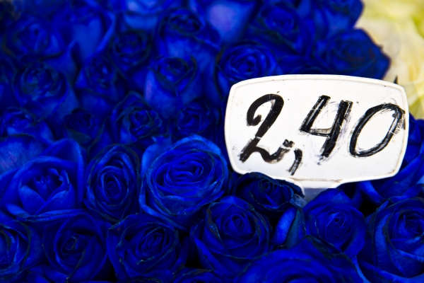 flowers and their price tags